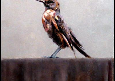 Jaco Benade - Bird L