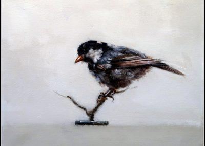 Jaco Benade - Bird LV