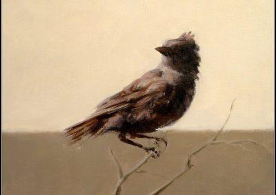 Jaco Benade - Bird Ll