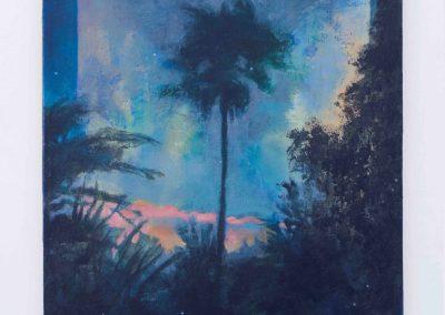 Jonathan Silverman - Nocturnal Palm